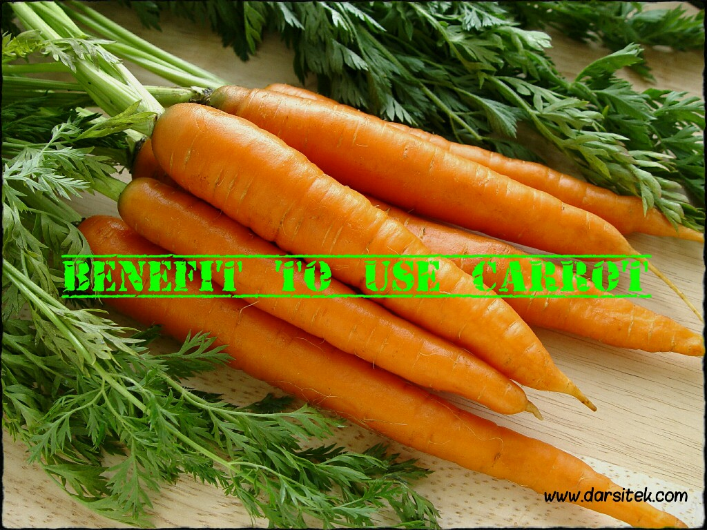 Benefit to Use Carrot