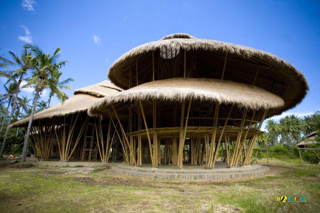 Mengenal Lebih Dekat Struktur Bambu