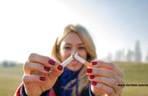 effects smoke on brain health