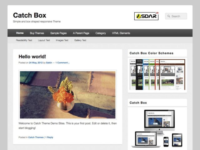 catch box wordpress