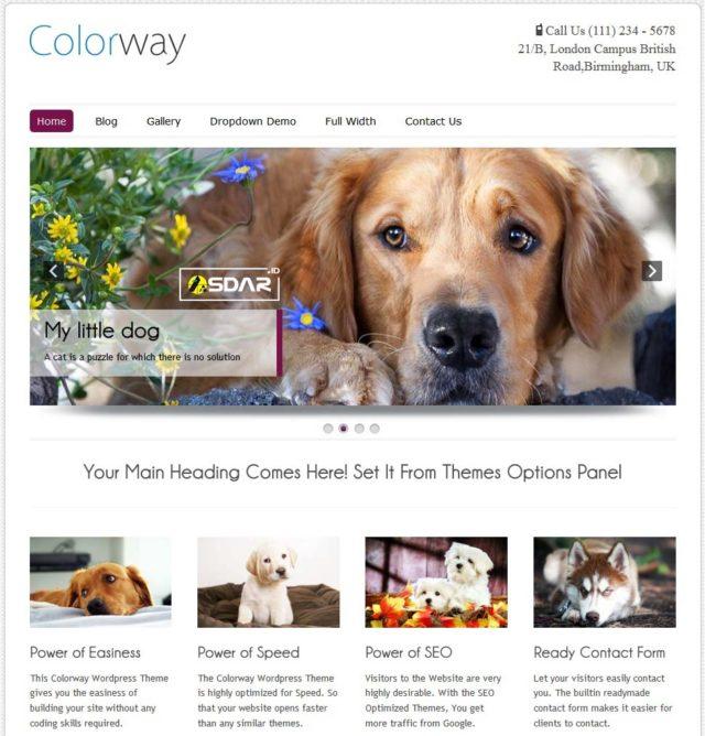 colorway wordpress