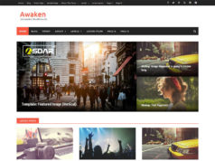 awaken wordpress