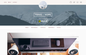 toivo lite wordpress