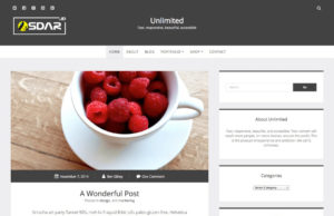 unlimited wordpress