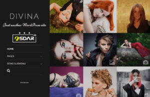 divina wordpress