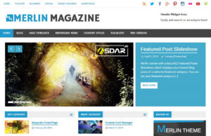merlin wordpress