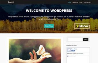 santri wordpress